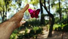 Co wspólnego ma żonglowanie z docenianiem?